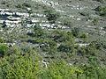 Forcalquier, vestiges de terrasses.jpg