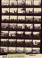 Ford B2157 NLGRF photo contact sheet (1976-11-01)(Gerald Ford Library).jpg