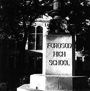 Fordson High School - Fordson flagpole