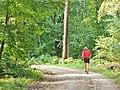 Forst Grunewald - Trimplatz (Grunewald Forest - Keep Fit Course) - geo.hlipp.de - 41389.jpg