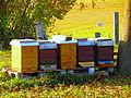 Frauenwinkel 2011-11-14 15-26-45 (SX230HS).JPG