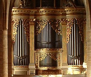 Sophienkirche - Silbermann organ in Freiberg Cathedral