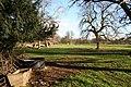 Fulbeck Park Avenue - geograph.org.uk - 335365.jpg