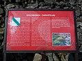 Góry Świętokrzyskie 10 - panoramio.jpg