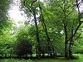 GOC Berkhamsted & Frithsden 016 Ashridge Estate (27811382564).jpg