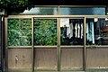 GREEN IN HOUSE - Flickr - m-louis.jpg