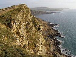 Gad Cliff to St Alban's Head