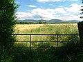 Gate, Tunstall Lane - geograph.org.uk - 335178.jpg
