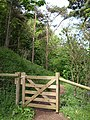 Gate on coast path, Coleton Fishacre - geograph.org.uk - 817410.jpg