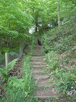 George's Steps, Lodge Hill - geograph.org.uk - 811427