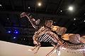 Gfp-plated-lizard-stegosaurus.jpg