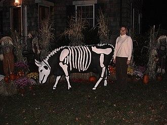 Gladys the Swiss Dairy Cow - Gladys as a skeleton