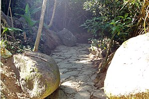Paraty - Image: Gold trail 12 cropped