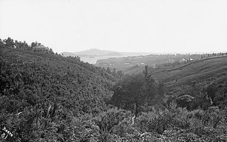 Grafton Gully - Grafton Gully looking northwards in 1863.