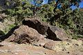 Gran Canaria Barranco de Mogán (MGK17500).jpg