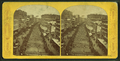 Grand military procession, June 17th, 1875, taken from Comer's Blue store 152 to 164 Washington St., Boston, from Robert N. Dennis collection of stereoscopic views.png