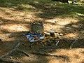 Grave of Henry David Thoreau at Sleepy Hollow Cemetery.jpg