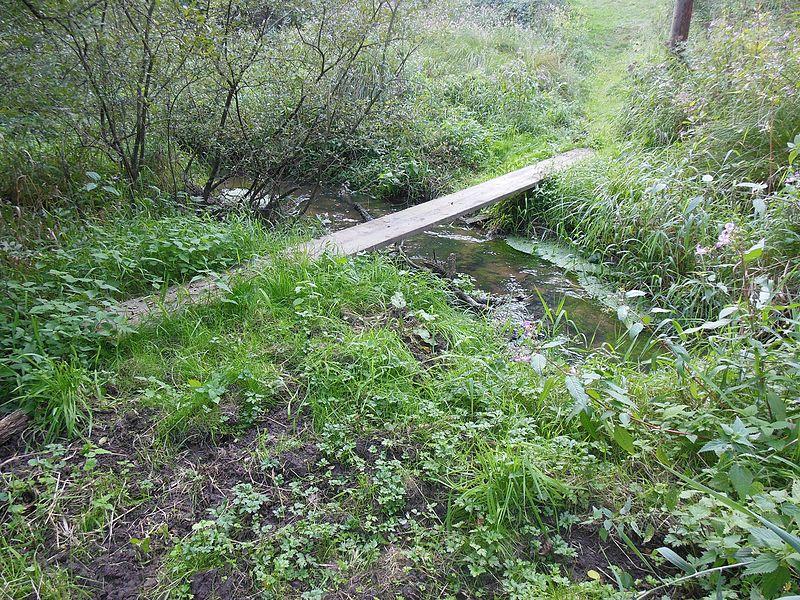 Grentzbach-Muehlgraben Brook between Montbronn and Meisenthal