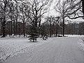 Großer Garten, Dresden in winter (1065).jpg