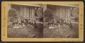Group portrait of women sitting on the grass in front of a house, by Burton Hine.png