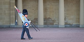 Queen's Guard - The RAF Regiment Ensign parades with the Queen's Colour