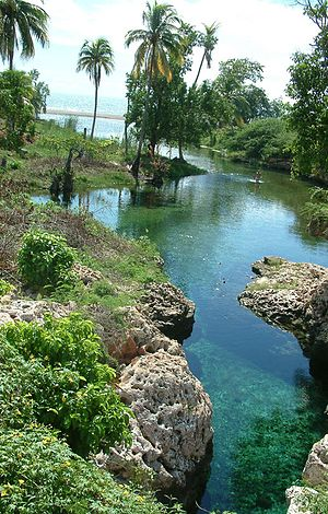 Gut River - Gut River and Jamaica's south coast.