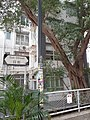 HK 灣仔 Wan Chai 日街 Sun Street near 星街 Star Street March 2020 SS2 01.jpg