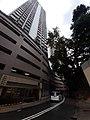 HK ML 半山區 Mid-levels 干德道 Conduit Road rain February 2020 SS2 20.jpg