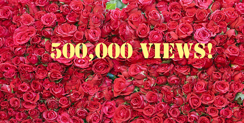 File:Half A Million Hits! Thank You. (5570018782).jpg