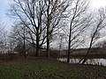 Hamm, Germany - panoramio (2755).jpg