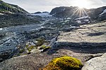 Hardanger glacier.jpg