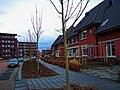 Harderwijk - Drielanden - Operapad - View WNW on Operadreef.jpg