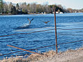 Hartley Road, near Kirkfield Ontario -b.jpg
