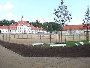 Neustadt (Dosse) - Stud Neustadt