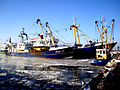 Haven Urk winter 2012-2.JPG