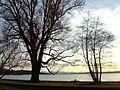 Herrsching, Seepromenade.ib.02.jpg