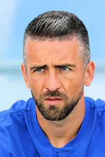 Vedad Ibišević Bosnian association football player