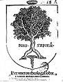 Hexameron theologal sobre el regimiento Medicinal contra la pestilencia 1519.jpg