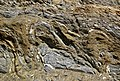 Highly convoluted gneiss (Archean; Norris South roadcut, Madison County, Montana, USA) 4 (43713104040).jpg