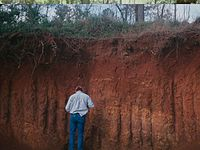 Hilo soil profile.jpg
