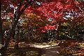 Himeji Koukoen18n4592.jpg