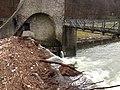 Hochwasser - panoramio (2).jpg