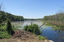 Hocomonco Pond, Westborough MA.jpg