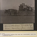 Homesteaders trekking from Moose Jaw, Saskatchewan (HS85-10-20797).jpg