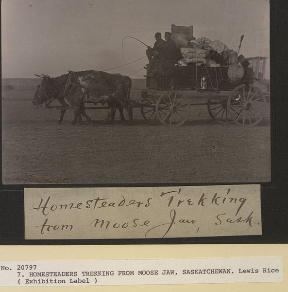 File:Homesteaders trekking from Moose Jaw, Saskatchewan (HS85-10-20797).jpg