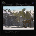 Horse drawn carraige, Montego Bay, Jamaica, early 20th century (imp-cswc-GB-237-CSWC47-LS12-013).jpg