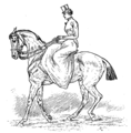 Horsemanship for Women 090.png