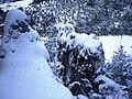 Hrádok-Turie - panoramio.jpg