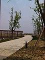 Huqiu, Suzhou, Jiangsu, China - panoramio (58).jpg