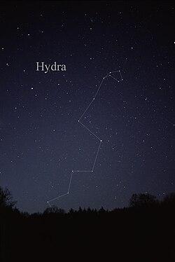 HydraCC.jpg